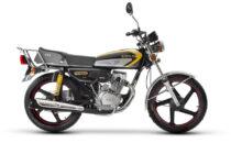 احسان-125-استارتی